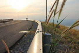 Criteri ambientali fitosanitari appalti ferrovie e strade
