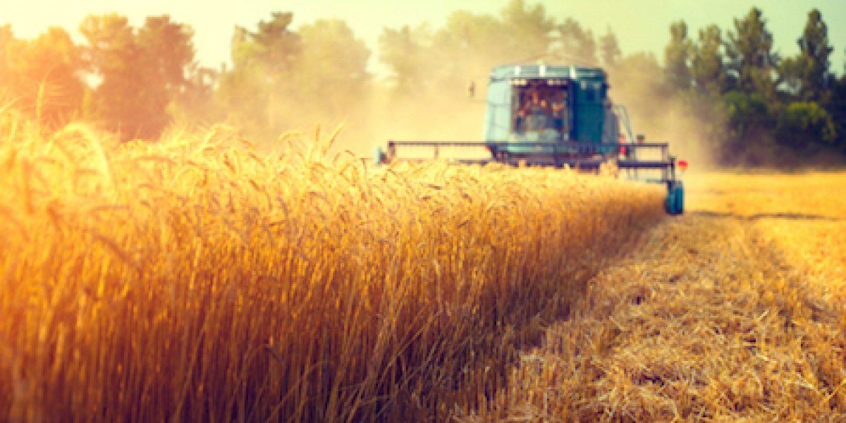 Lavoro occasionale in agricoltura: aggiornata la piattaforma informatica INPS
