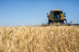 Inail, servizio telematico per la denuncia degli infortuni per il settore agricolo
